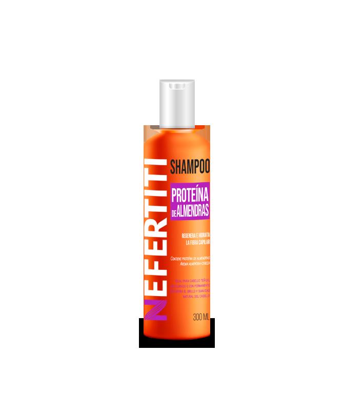 Shampoo con extracto de almendras para CABELLO TEÑIDO 300ml